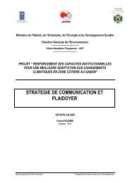 Gabon_Stratégie de Communication et Plaidoyer_2011