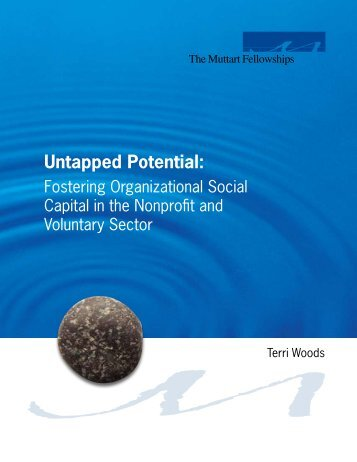 Untapped Potential: Fostering Organizational Social Capital in the ...
