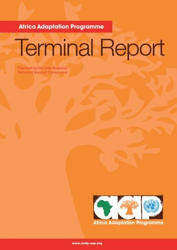 AAP Terminal Report.pdf - Africa Adaptation Programme