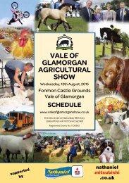 Vale Glam schedule 2015