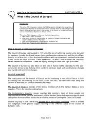"""What is the Council of Europe?"" in English (PDF – 118 KB)"