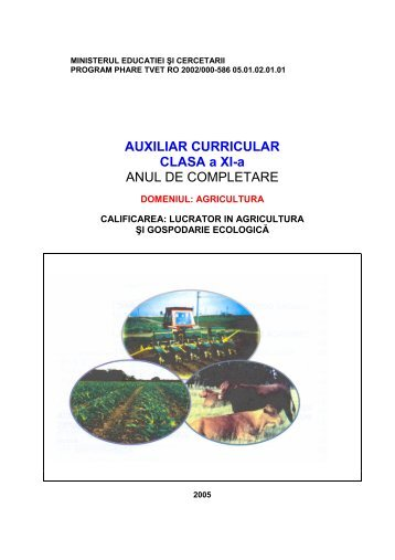 AUXILIAR CURRICULAR CLASA a XI-a ANUL DE ... - cndipt