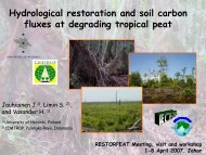 Hydrological restoration and soil carbon fluxes at ... - SPLU.nl
