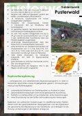 aurex-info-folder_web - Seite 5