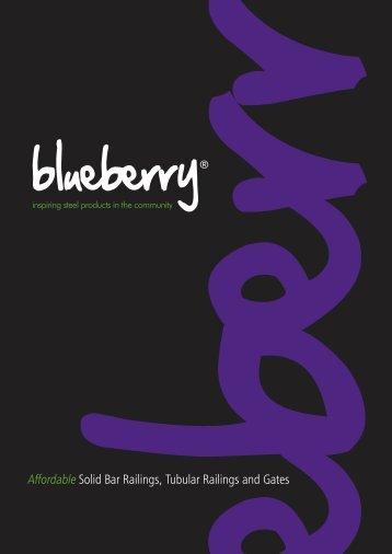 Blueberry-Brochure