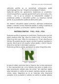 4 raster v računalništvu 5 primerjava med rastrsko in vektorsko ... - Page 7