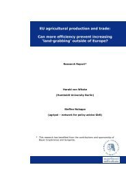 EU agricultural production and trade: Can more efficiency prevent ...