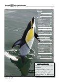 Katalog '7 - Modell-Uboot-Spezialitäten - Seite 2