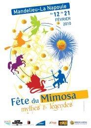 Fête du Mimosa - Avignon et Provence