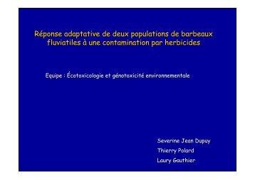 Réponse adaptative de deux populations de barbeaux ... - EcoLab
