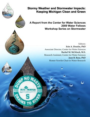 Stormy Weather and Stormwater Impacts - MSU Center for Water ...