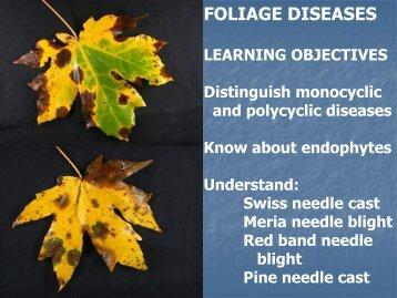 FOLIAGE DISEASES