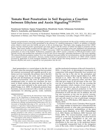 Tomato Root Penetration in Soil Requires a ... - Plant Physiology