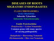 DISEASES OF ROOTS MIGRATORY ECTOPARASITES