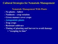 Green manure cover crops, Antagonistic plants
