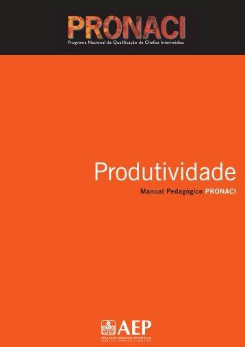 Produtividade.pdf - Programa de Formação PME - AEP
