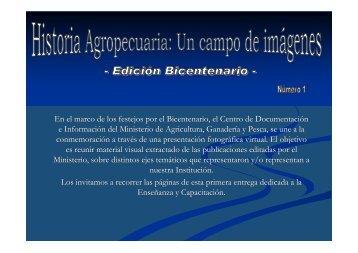 En el marco de los festejos por el Bicentenario, el Centro de ...