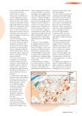 GEOmedia 2 2015 - Page 7