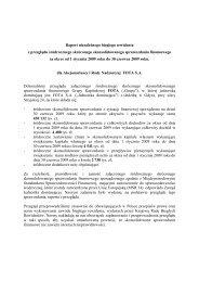 BDO raport z przeglądu półrocznego sprawozdania ... - Fota SA