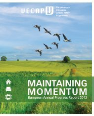 VECAP 2012 Report - BSEF