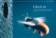Insektenhotels: Check in - AUFRAD.CH Home