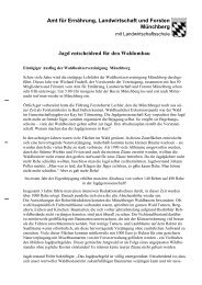 Jagd entscheidend für den Waldumbau - Amt für Ernährung ...