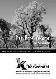 Der Berg-Ahorn - Alpenpark Karwendel