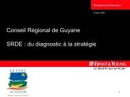 Le document consultable - Région Guyane