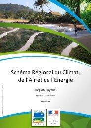 rapport présentant l'état des lieux - Région Guyane