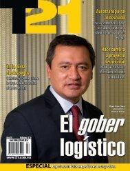 Revista T21 Abril 2009.pdf