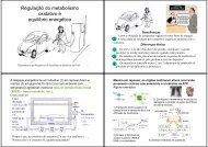 Regulação do metabolismo oxidativo e equilíbrio energético