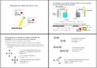 Slides das 2 aulas teóricas sobre Reacções Redox nos Seres Vivos