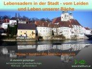download - Blattfisch
