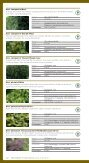 Løvtræer og buske - HedeDanmarks Planteskole - Page 5