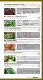 Løvtræer og buske - HedeDanmarks Planteskole - Page 6