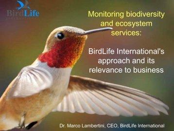 Dr. Marco Lambertini (BirdLife International)