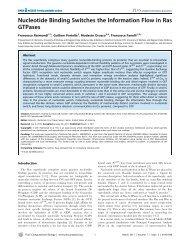 View - Molecular Modelling & Bioinformatics Group