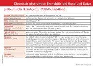 Chronisch obstruktive Bronchitis bei Hund und Katze ... - Zivet.de