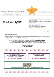 Willi´s Schätzla Orchideen - DOG Landesgruppe Württemberg