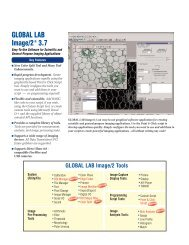 Global Lab Image/2 3.7 - I-cube Image Analysis and Processing