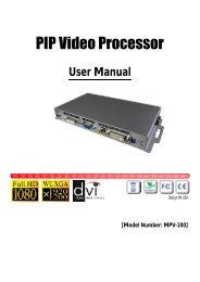 PIP Video Processor - Ambery
