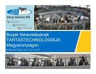 Barkóczi Tibor Borjúnevelés tartástechnológia v1 - MSD Animal Health