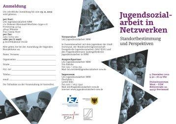 Jugend sozial - arbeit in Netz werken - Landesarbeitsgemeinschaft ...
