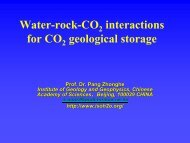 Water-Rock-CO2 interactions for CO2 Geological Storage - CAGS