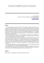 agglomeration des pme & developpement technologique - ISDM
