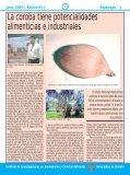 Reportajes 2 - Iibcaudo - Page 3