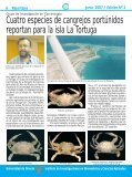 Reportajes 2 - Iibcaudo - Page 6