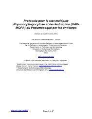 Protocole pour le test multiplex d'opsonophagocytose et de ...