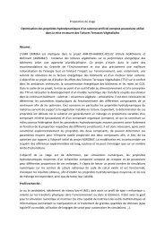 Proposition de stage Optimisation des propriétés ... - Inra