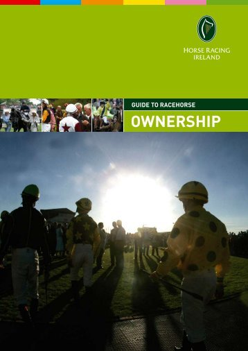 Guide To Racehorse Ownership - Horse Racing Ireland